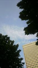 虎ノ門のうろこ雲