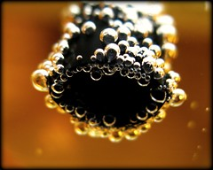 The straw (Joketje) Tags: abstract macro water yellow digital canon colours straw bubbles icon foodanddrink picnik shallowdepthoffield canonpowershotg9 beginnerdigitalphotographychallengewinner beginnerdigitalphotographychallenge
