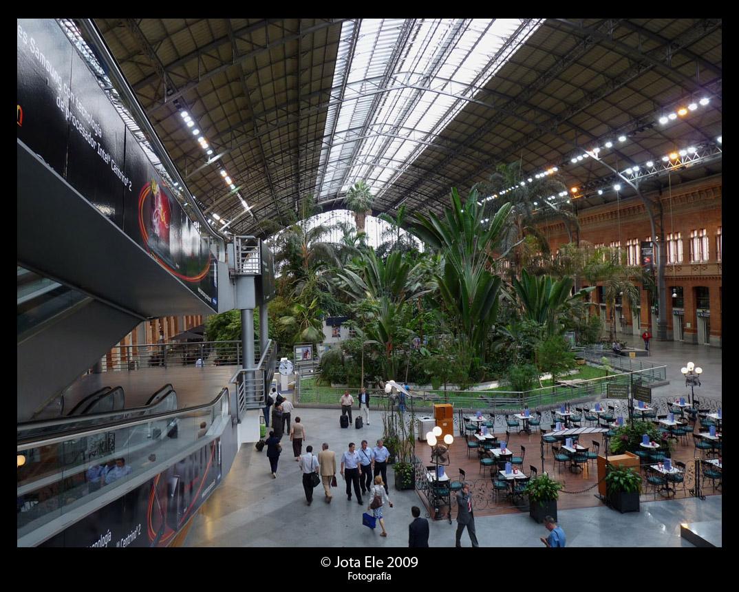 Interior Estación RENFE Atocha III