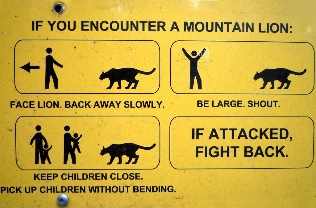 Mountain Lion Warning Sign