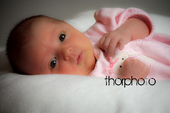 Hi! (ThorPhoto) Tags: ohio baby studio basement cutie tiny springfield barth ameilia thorphoto thorbisher