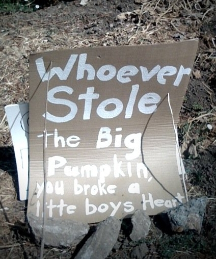 Whoever stole the Big Pumpkin you broke a little boy's heart
