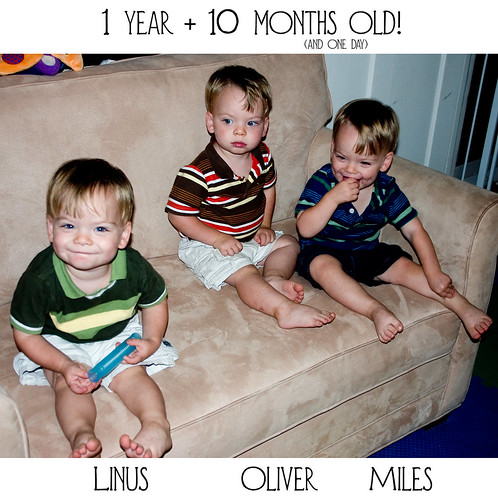 22 months old!