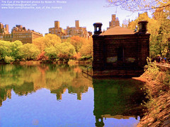 Jaqueline Kennedy Onassis Reservoir. The Reservoir was built between 1858 and 1862, to the design for Central Park of Frederick Law Olmsted and Calvert Vaux. (nrhodesphotos(the_eye_of_the_moment)) Tags: reflection building tree water fence buildings landscape branch view centralpark manhattan shoreline reservior jaquelinekennedyonassisreservoir reflectsobsessions nrhodesphotosyahoocom wwwflickrcomphotostheeyeofthemoment theeyemomentphotosbynolanhrhodes dscn6895nhrtt