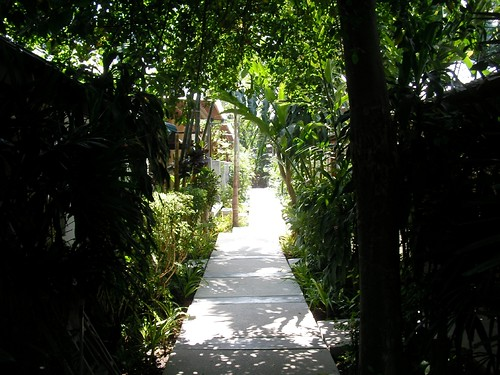 Koh samui Evergreen resort path2
