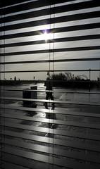 Shades of mundanity (John R Moore) Tags: winter sun silhouette island shadows hayling blinds