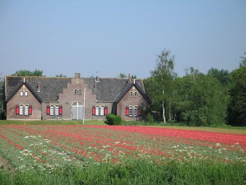 hollande2R