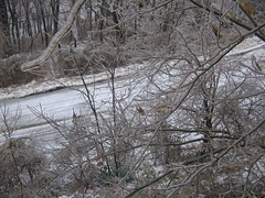 Hilliside Avenue (junebug_1944) Tags: icestorm eurekaspringsar january2009