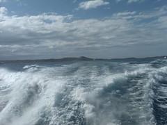 On the ferry from Fajardo to Vieques. (angelaortizmusic) Tags: ferry puertorico fajardo vieques