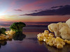 Vegetable sunset (Mr Grimesdale) Tags: food art surreal olympus cauliflower sweetcorn brocolli vegatables e510 mrgrimsdale stevewallace broccili mrgrimesdale