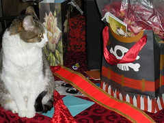 mia surveys the booty (Like A Fox Jewelry) Tags: party costume booty pirate pirateship