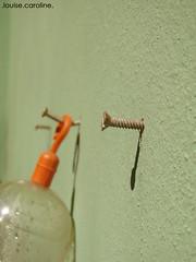 foil (Louise Caroline) Tags: gua prego parede pregos