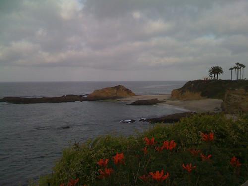 Coastal Laguna