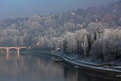 Un peu de fracheur (Boccalupo) Tags: winter italy river torino italia hiver fiume piemonte po inverno turin piedmont italie fleuve piemont visitpiedmont