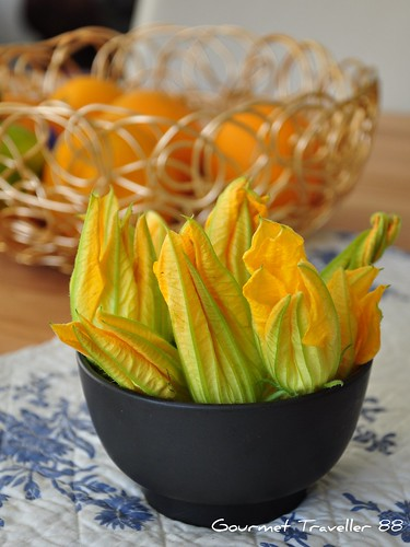 Zucchini flowers freshly picked
