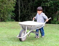 Toninho e carrinho (se.shira) Tags: criana menino carrinho empurrando