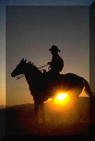 cowboy%20on%20a%20horse