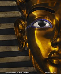 The Golden Mask of Tutankhamun (Sandro Vannini) Tags: gold kingtut ancient cobra photos egypt vulture boyking deathmask tutankhamun egyptology solidgold egyptians lapislazuli goldenmask kv62 howardcarter funery burialmask heritagekey funerymask keyobject140 sandrovannini