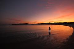 Solpor con silueta, Praia de Coroso, Ribeira (trabancos) Tags: sunset praia beach atardecer playa silouette galicia galiza puestadesol silueta anochecer anoitecer solpor barbanza trabancos
