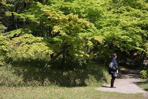 渉成園 The Shosei-en Garden