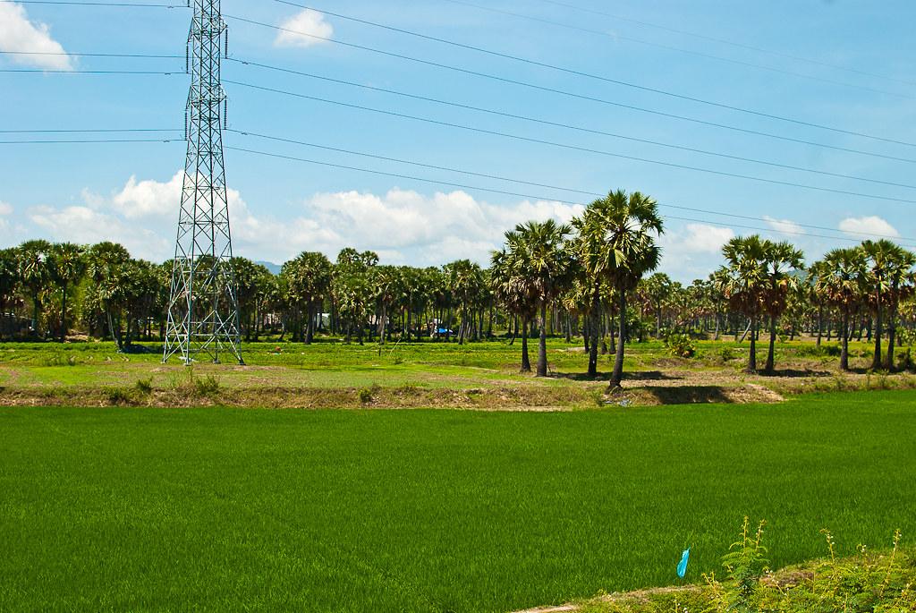 An Giang-2011-May 08, 2011485