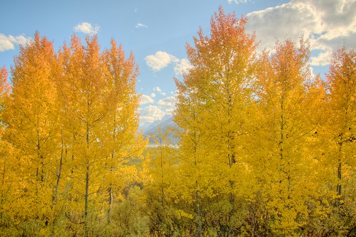Colors of Grand Teton