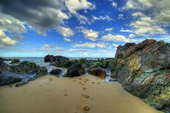 Sea Dog (_davidh_) Tags: sea beach sand rocks australia wideangle victoria tasmansea 2009 pawprints hdr seadog mallacoota photomatix sigma1020 mywinners canoneos400d quarrybeach
