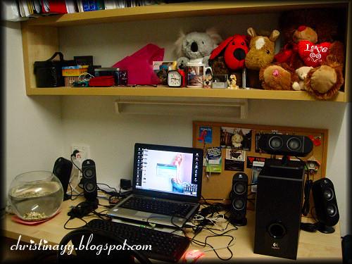 cHrIstInA_YY's Study Desk