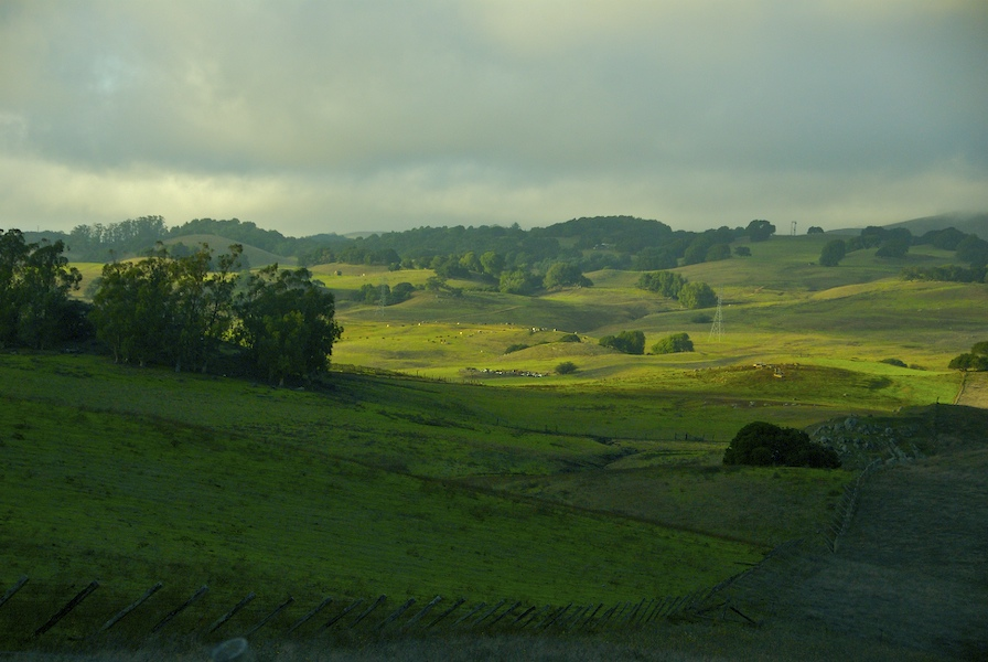 The rolling hills of..