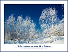 Winterscape - The Beauty of Winter! (Pierre Contant) Tags: winter canada tourism forest photoshop nikon quebec pierre hiver lookout belvedere neige ottawariver winterscape abitibi d300 cs3 temiscaming contant cans2s forestery abitibitmistamingue tmistamingue pierrecontant lactemiscamingue laketemiscaming