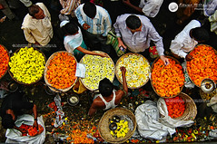 Flower Seller, Dadar Phool Gali, Mumbai - India. ( Rizwan Mithawala) Tags: street travel flowers people india flower blog flora flickr lily market perspective culture streetphotography photojournalism documentary business bombay buds maharashtra bazaar tradition mumbai marigold seller flowermarket marathi dadar flowerseller rizwan travelphotography tpa maratha maharashtrian twitter dadarphoolgalli rizwanmithawala gendaphool mithawala rizwanmithawalaphotographer tpatown