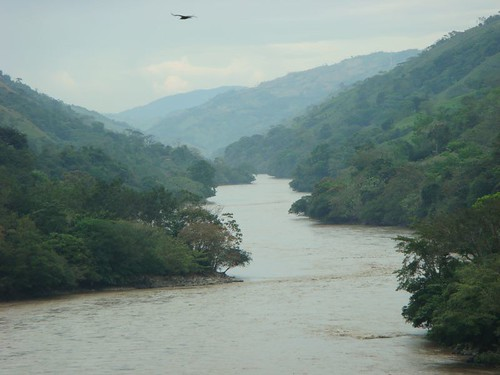 The Rio Cauca at around 400 m.a.s...