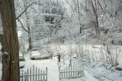 Towards the driveway (junebug_1944) Tags: icestorm eurekaspringsar january2009