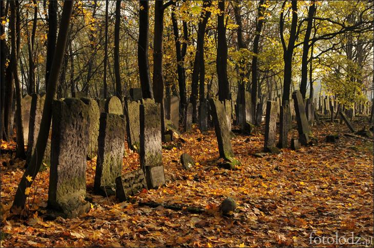 Cmentarz żydowski w Łodz jesienią