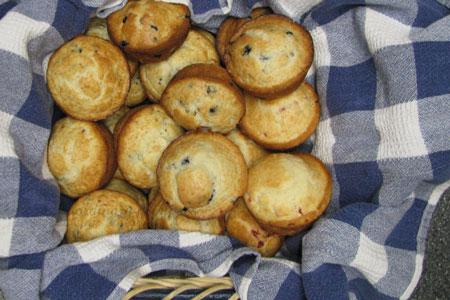 muffins_032209_0001web