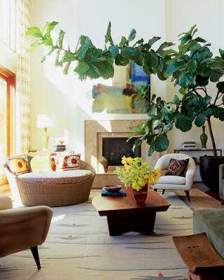 Warm, modern California living room, featured in Elle Decor