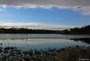 winter's retreat (-kaicee-) Tags: blue reflection bird ice water clouds highpark kaicee wintersretreat canonxsi