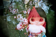 doll's fantasy