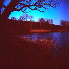 Early morning-V (gelelie / Gerda) Tags: toycamera diana ektachrome kralingseplas doityourselfcolor