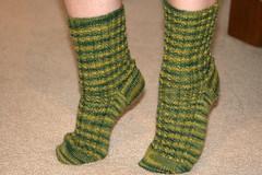 Turtle Socks (mersears) Tags: socks turtle knit picks