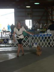 Lydia and Harley Best of Breed!
