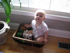 ena in a toybox