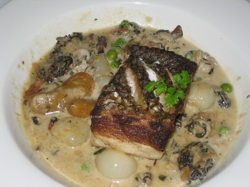 Pan-Seared Wild Sea Bass with Morels, Cippolini Onions and Oyster Stew