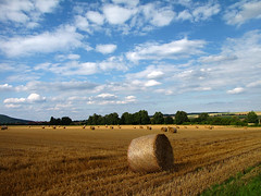 Summer impressions (RainerSchuetz) Tags: cloud texture field clouds landscape hessen farming landwirtschaft scenic feld bluesky land agriculture landschaft acre acker ernte hesse stubblefield strohballen stoppelfeld baleofstraw ackerbau landschaftsfotografie
