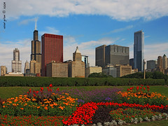 City of Flowers (iCamPix.Net) Tags: chicago canon illinois explore frontpage downtownchicago cookcounty windycity 2196 markiii1ds