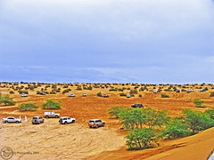 Dubai, Al Warqa (Kane_VTC) Tags: blue winter sky tree car rain yellow landscape dubai desert 4x4 uae best explore land kuwait  qatar  vtc            kanevtc