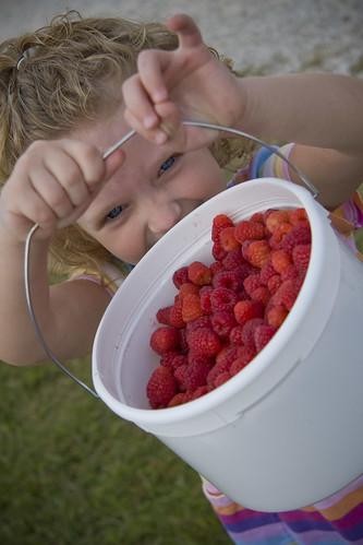 mooshberries