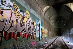 heart of darkness (Luna Park) Tags: nyc pet ny newyork graffiti tracks tunnel lunapark openstudio trackside erupto 907 muk123 cahbasm