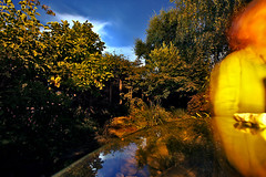 Newbury backyard at night (Mike Dillingham) Tags: california longexposure plants blur reflection glass night canon garden mom table eos berkeley backyard weekend wideangle september deck bayarea lin 2009 newbury laborday dillingham canonefs1022mmf3545usm 40d