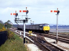 Class 45 45007 Dawlish warren 1/5/82 (Stapleton Road) Tags: class45 dawlishwarren 45007 semaphore 1982 station